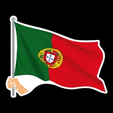 Vlajka PT