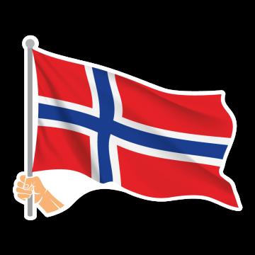Vlajka NO